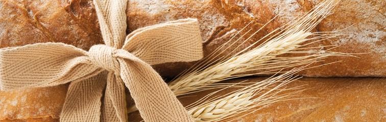 Quel est le meilleur pain pour la santé?