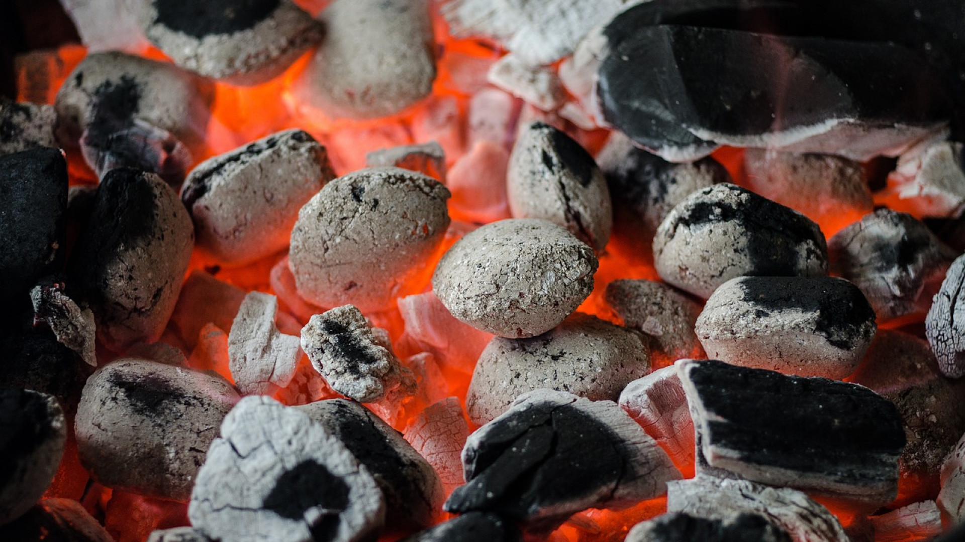 Le barbecue, une cuisson incontournable pour l'été